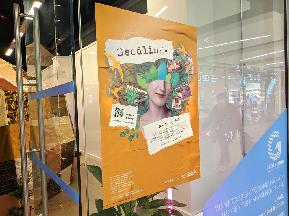 Seedling poster on window